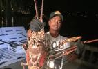 Divulgação/Sanctuary Marine Bermuda