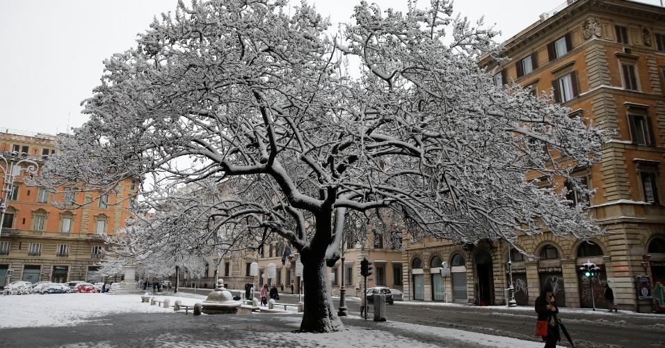 26.fev.2018 - Árvore fica coberta de neve em Roma, Itália