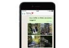 WhatsApp para iPhone ganha galeria de fotos, filtros e atalho de resposta (Foto: Divulgação)
