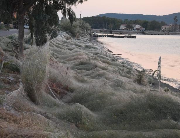 Praia na Grécia amanheceu coberta por uma teia de aranha de 300 metros - Reprodução