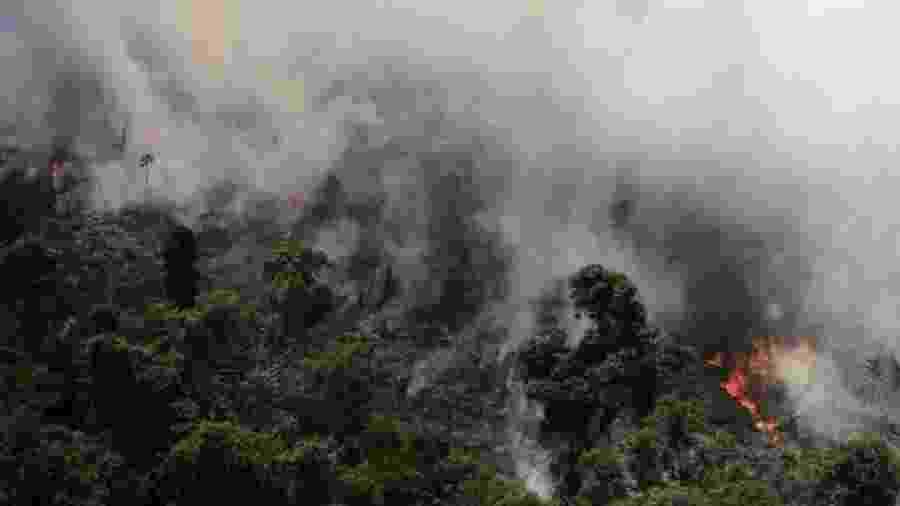 """""""A perda é de valor inestimável. Muito superior ao das multas aplicadas, quando se encontra o culpado, o que é raro"""", diz Izar Aximoff, que estudou a recomposição de florestas no Rio de Janeiro após queimadas - Nacho Doce/Reuters"""