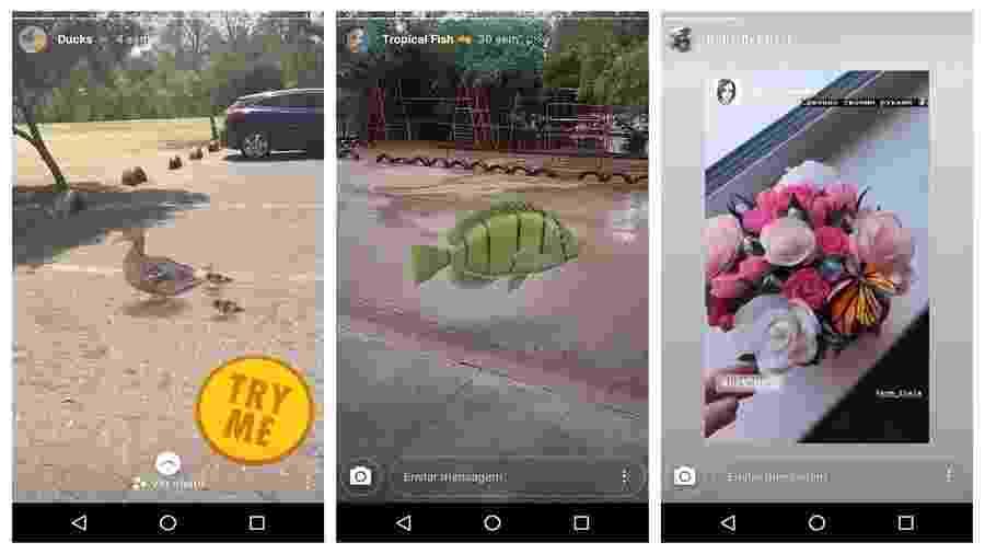 Pato, peixe e borboleta: a arca de Noé no Instagram está à solta - Reprodução