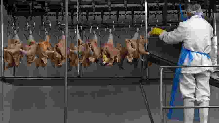 Processamento de carne de aves em frigorífico em Itatinga (SP) - Paulo Whitaker