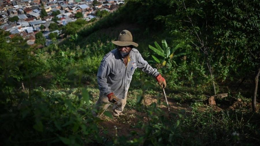 10.ago.2021 - Luis Diaz trabalha em sua horta no bairro de La Vega, em Caracas (Venezuela) para ter o que comer - FEderico Parra/AFP