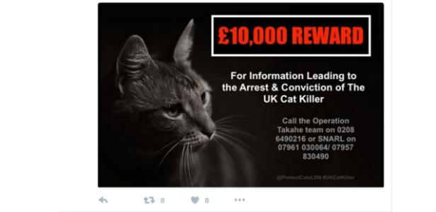 Uma das postagens oferece 10 mil libras de recompensa por pista que leve a capturar criminoso