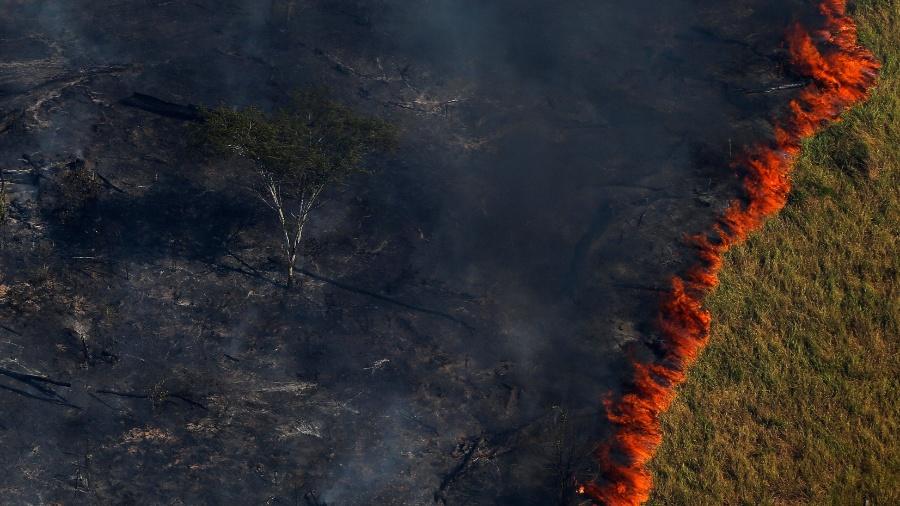 Incêndio florestal em área de desmatamento no Estado do Amazonas - Bruno Kelly/Reuters