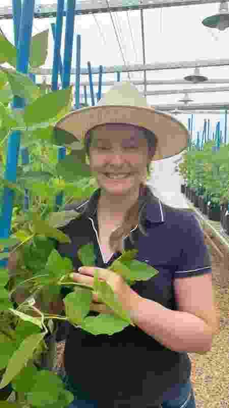A engenheira agrônoma que atua na melhoria da soja, Micheli Possobom, vai comandar a estação de melhoramento genético da Ellas em Sertanópolis, no interior do Paraná - Divulgação - Divulgação
