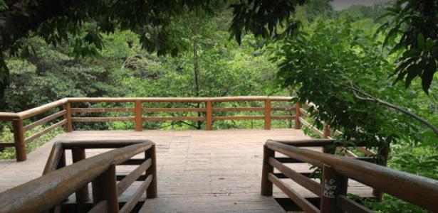 Corpo foi encontrado em matagal no parque ecológico Lago do Cortado, no Distrito Federal - Reprodução/Google Maps