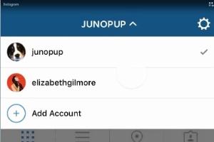 Instagram adiciona recurso que permite troca entre múltiplas contas