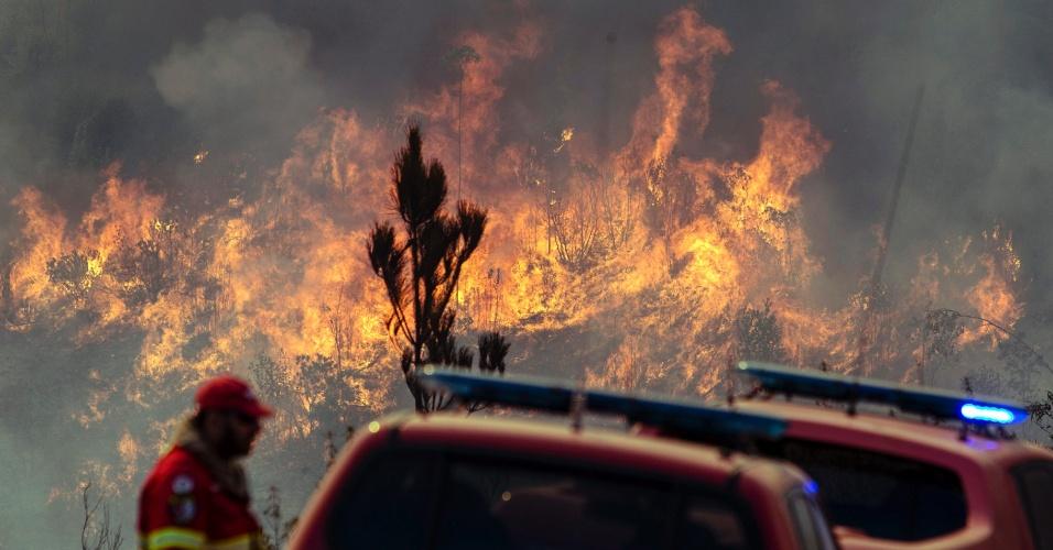8.set.2016 - Bombeiros tentam apagar o incêndio na Serra de Monchique, ao sul do distrito de Faro, em Portugal