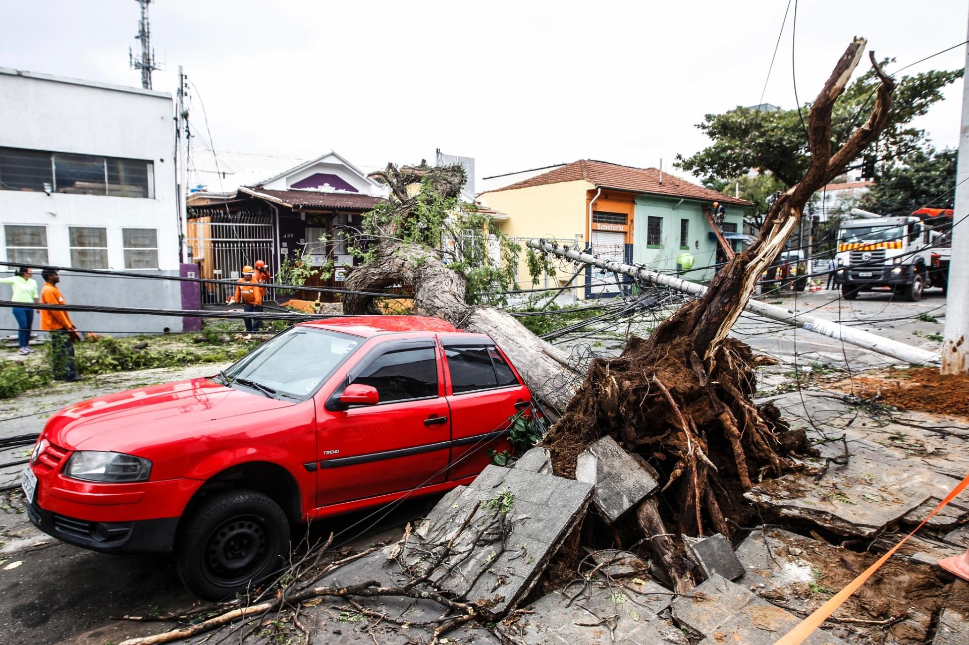 21.out.2016 - Funcionários trabalham para retirar um árvore que caiu em cima de um carro na rua Albion, após fortes chuvas em São Paulo nesta quinta-feira (20)