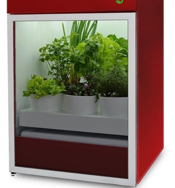 Estufa para cultivo de hortas, da empresa Plantário, de Porto Alegre (RS)