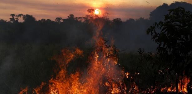 Resultado de imagem para Com alta exponencial de queimadas, Amazonas decreta situação de emergência