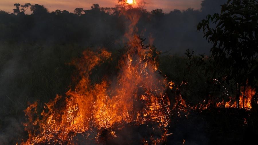 Fogo em floresta de Apuí, no sul do Amazonas, cidade com o maior número de focos do fogo no estado neste ano - Bruno Kelly - 31.jul.2017/Reuters