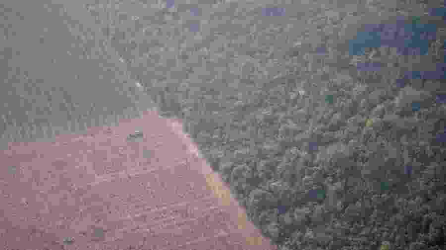 Imagem aérea do último dia 22 mostra trator em uma plantação ao lado de floresta perto de Porto Velho (RO); presidente da SRB não vê contradição entre preservar e aumentar produção - Ueslei Marcelino/Reuters