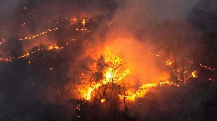 Queimadas no Brasil: área queimada quase dobra no Brasil em 2019 ...