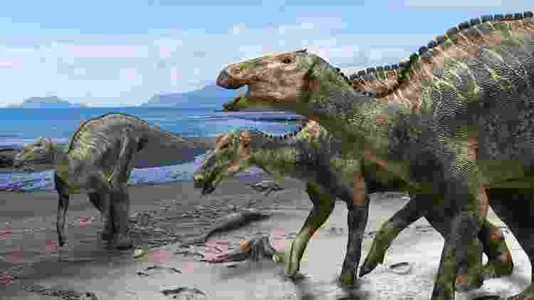 """Pesquisadores encontraram um fóssil de um """"bico de pato"""" herbívoro, o maior encontrado até agora no Japão - Reprodução/ Kobayashi Y., et al, Scientific Reports/ Universidade de Hokkaido"""