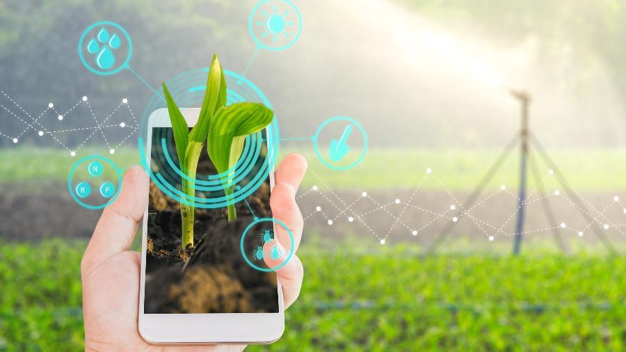 Agrotechs e agrofintechs estão crescendo e precisam de líderes experientes - Getty Images/iStockphoto/lamyai