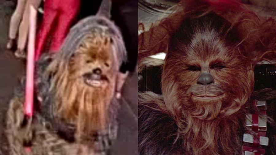 """A polícia da cidade de Nova Orleans (EUA) procura suspeito vestido de Chewbacca (à esquerda), que teria esfaqueado uma pessoa; À direita, o personagem na franquia """"Star Wars""""  - Reprodução/Twitter/Divulgação"""
