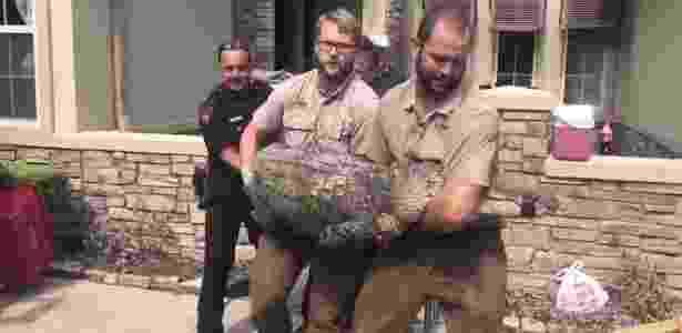 Policiais retiraram jacaré de 2,7 metros de comprimento da casa de Foster - Reprodução/ABC13Houston