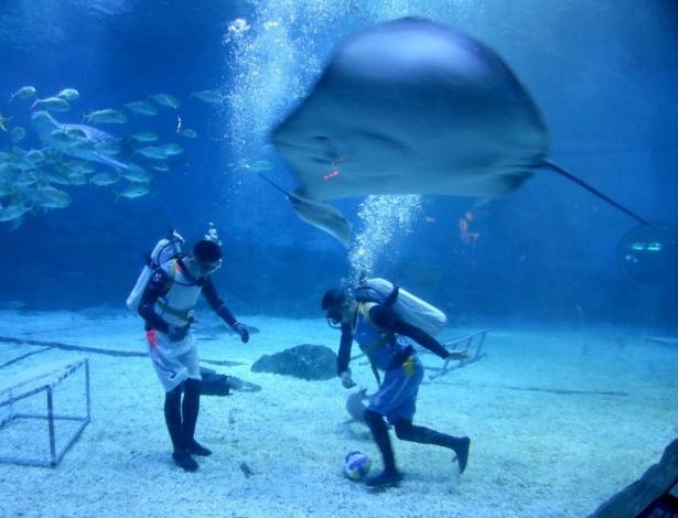 9.ago.2016 - Mergulhadores jogam futebol em aquário com tubarões em parque temático em em Yantai, província de Shandong, na China. O local realiza uma Olimpíada Submarina para atrair visitantes