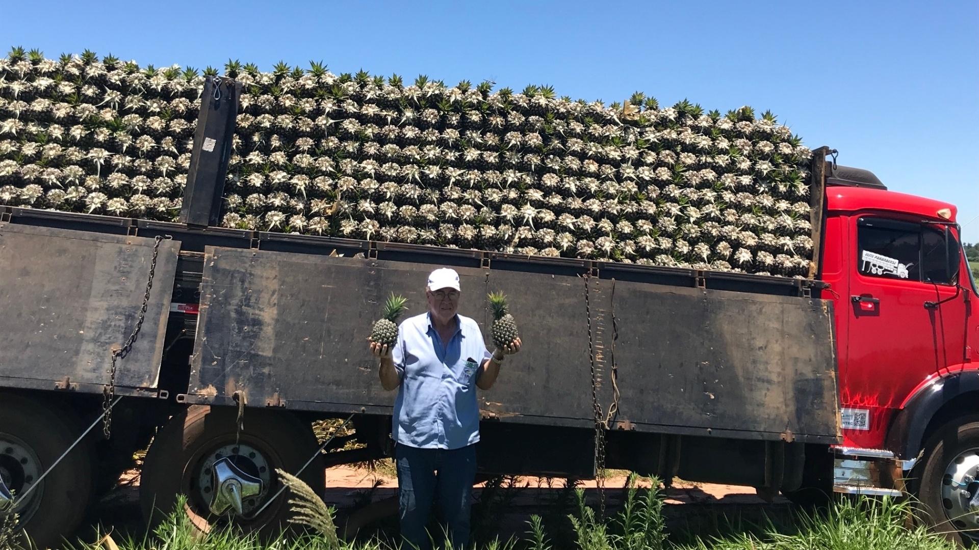 Produtores de abacaxis no PR