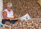 Nova Previdência dificulta acesso e pode aumentar pobreza, diz economista