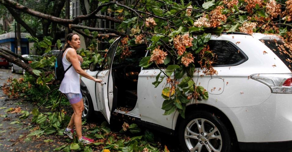 21.out.2016 - Árvore de grande porte caiu sobre veículo na rua Tacumã, próximo à da Avenida Brigadeiro Faria Lima, zona oeste de São Paulo, devido à forte chuva de quinta-feira (20)