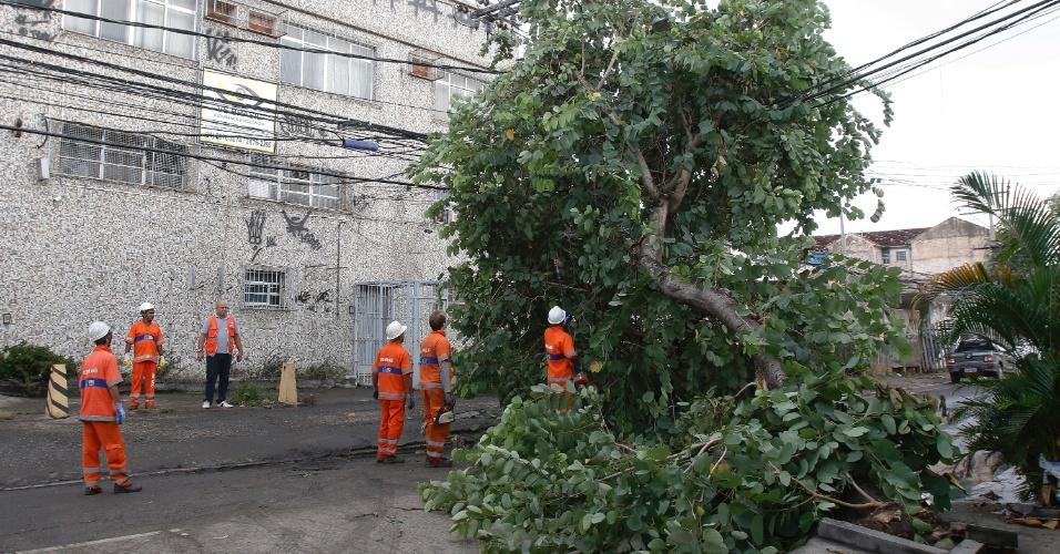 15.fev.2018 - Funcionários da Comlurb trabalham para liberar a via após queda de uma árvore na Rua Nossa Senhora das Graça, em Ramos, zona norte do Rio