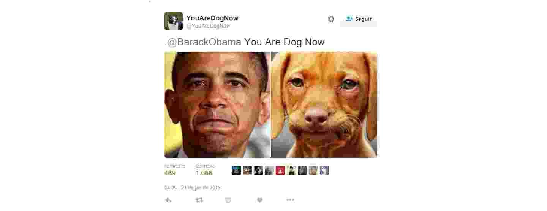 """5.fev.2016 - A conta do Twitter @YouAreDogNow tem como objetivo comparar fotos de pessoas com seus """"gêmeos"""" caninos. """"Siga-me e envie uma foto de si mesmo de sua turma, eu vou fazer de você um cachorro"""", diz a descrição. - Reprodução/Twitter @youaredognow"""