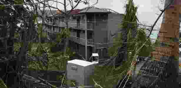 29.mar.2017 - Árvores caídas após a passagem do ciclone Debbie pela ilha Hamilton, na Austrália - AFP PHOTO / Dennis Garrett - AFP PHOTO / Dennis Garrett