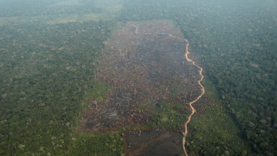 Vista áerea de área desmatada na Amazônia, nos arredores de Humaitá (AM) - 22.ago.2019 - Ueslei Marcelino/Reuters