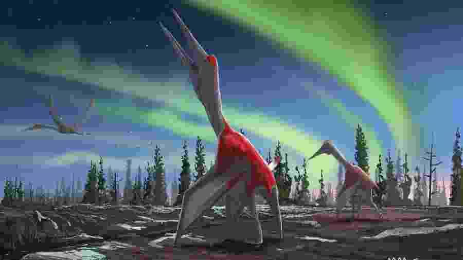 10.set.2019 - Uma imagem de folheto sem data divulgada pela Universidade Queen Mary de Londres, mostra a impressão artística de um Cryodrakon boreas, uma espécie de pterossauro recém-descoberta. - David Maas/várias fontes/AFP