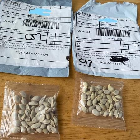 Pacotes com sementes já chegaram a pelo menos sete estados americanos - Divulgação/Departamento de Agricultura de Washington