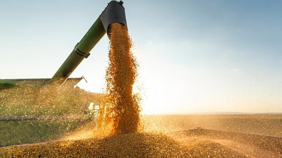 A produção da soja deve crescer 10,3% ante 2020, totalizando 134milhões de toneladas - iStock