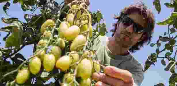 Dotan Goshen se cansou da infelicidade no emprego - Jack Guez/AFP