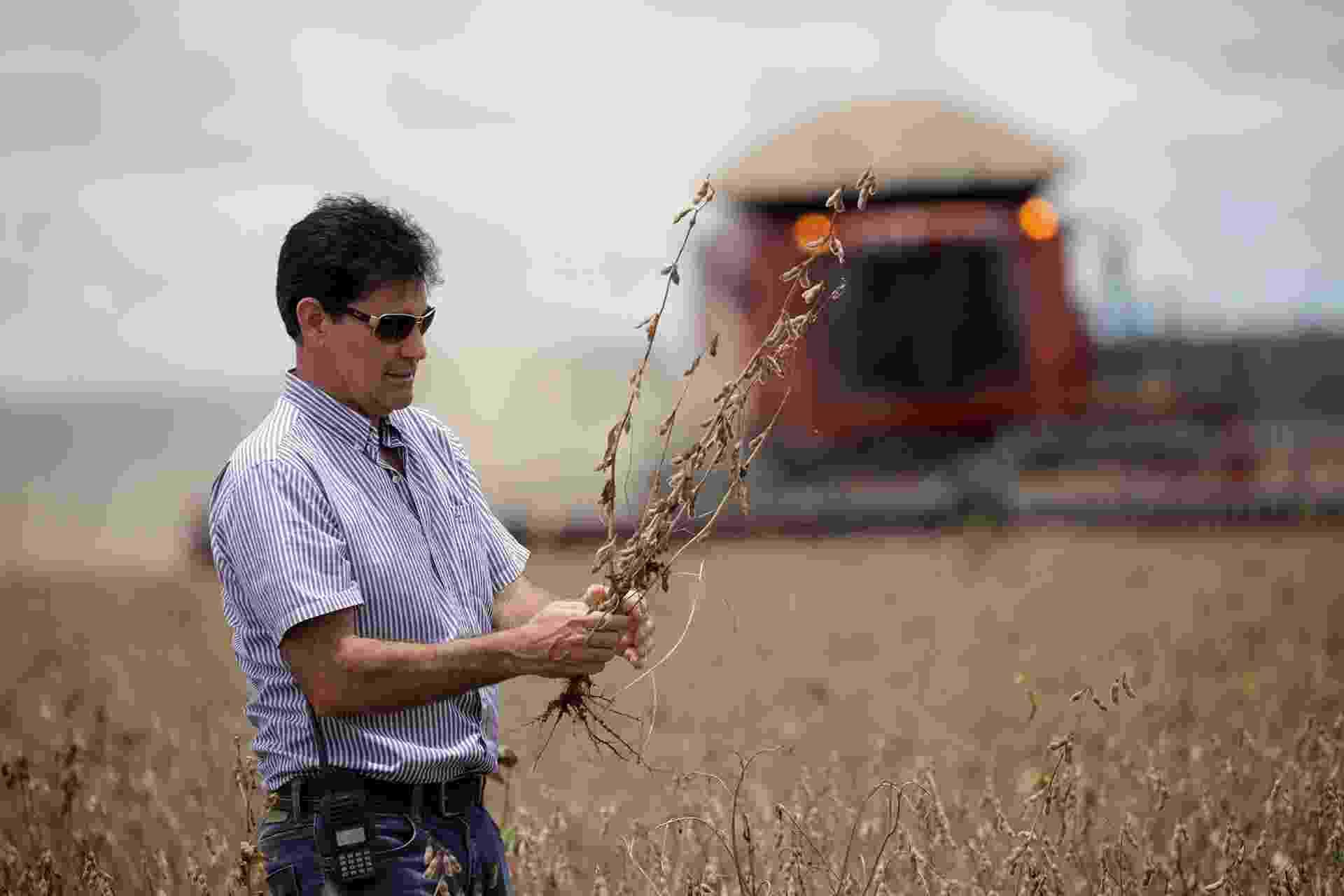 O agricultor Julimar Pansera inspeciona sua plantação de soja em Campos Lindos (TO), no cerrado brasileiro - Ueslei Marcelino/Reuters