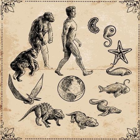 Todos os seres vivos compartilham o mesmo ancestral  - Getty Images