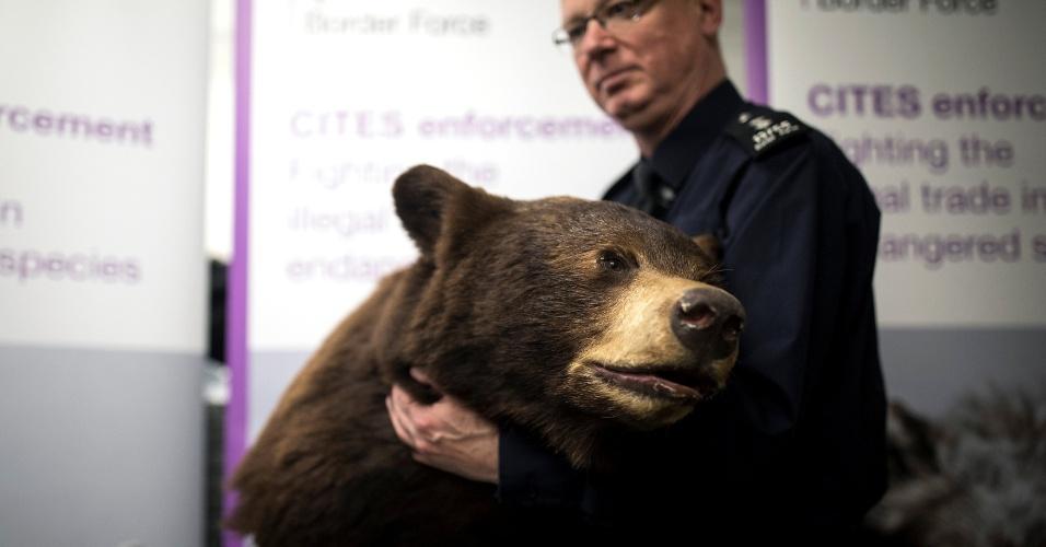 28.dez.2017 - A cabeça de um urso marrom empalhado está entre os itens apreendidos no aeroporto de Heathrow, em Londres, e relacionado a comércio ilegal