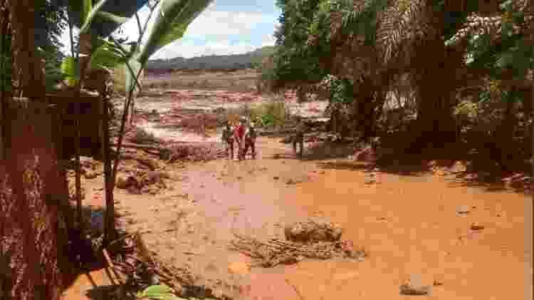 Lama toma área em Brumadinho (MG) após rompimento de barragem - Corpo de Bombeiros de Minas Gerais