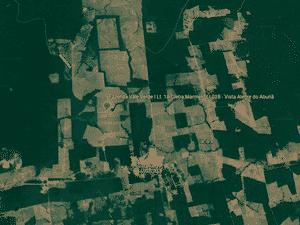 Imagem por satélite da fazenda que foi alvo de fiscalização do Ibama em Vista Alegre do Abunã, em Rondônia - Reprodução/Google Earth - Reprodução/Google Earth