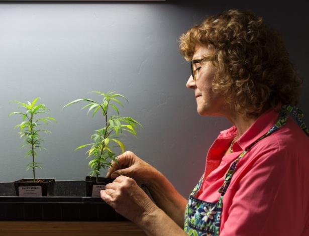Lyn Kusher, 66 anos, é fundadora da Ma Kush's Natural, que fica em Encinitas, Califórnia, e vende sabonetes, loções, bálsamos e doces a base de maconha