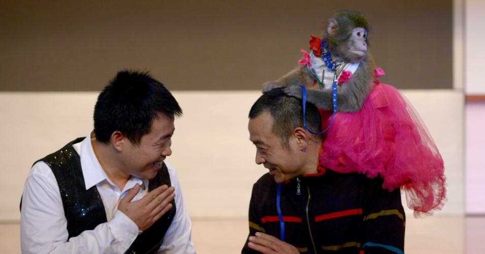Treinadores do zoológico Dongying, província chinesa de Shandong, preparam macacos que se apresentarão nas festividades do Ano Novo Chinês do Macaco. As festividades começam em 8 de fevereiro.