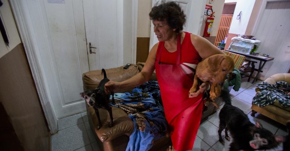 Os animais, segundo ela, foram deixados por usuários de crack