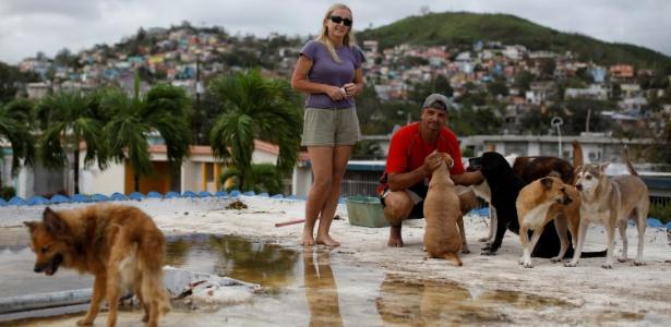 Sandra Harasimowicz e Gary Rosario abrigaram seus cães de estimação no telhado da casa de um vizinho para salvá-los do furacão Maria