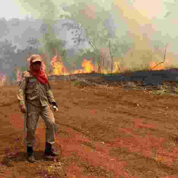 Secretaria do Meio Ambiente do Pará/Divulgação