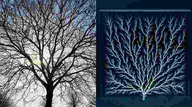À esquerda, a silhueta de uma árvore. À direita, as figuras de Lichtenberg, que nada mais são que descargas elétricas ramificadas... Curiosamente são parecidas, não? - Science Photo Library