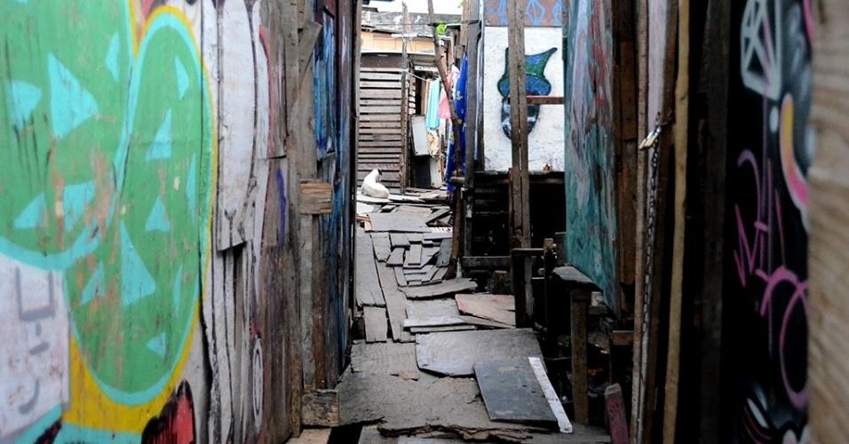 """3.mar.2016 - A comunidade """"favela do Sossego, no bairro do Pina, na região sul do Recife tem cerca de 100 famílias. As casas foram erguidas sob tábuas no rio Capibaribe. Não há dados de quantas pessoas na comunidade já ficaram doentes com tríplice virose (zika, dengue e chikungunya). Especialmente porque muitas pessoas ficam doentes e não procuram serviços de saúde --que segundo eles são longe e lotados"""