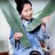 Chinesa come planta venenosa por engano. E cena é transmitida ao vivo - Youtube