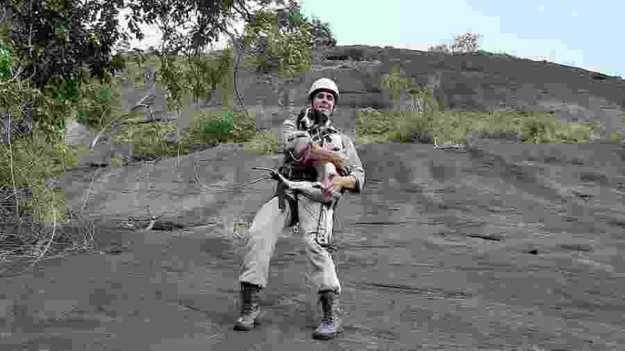 Bombeiro resgata cachorro que ficou preso em montanha por quatro dias no ES - Reprodução/Instagram